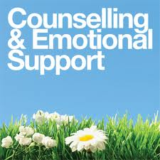 counseling 04