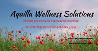 tn Aquilla Wellness Solutions FB